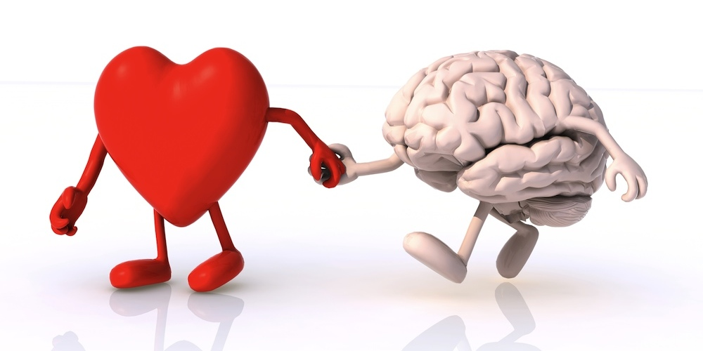 What is important brain or heart