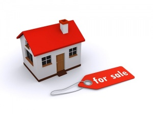 house with for sale tag