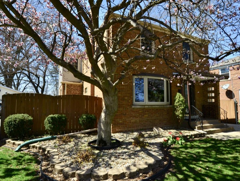 Photo of 10212 Maplewood Chicago IL 60655