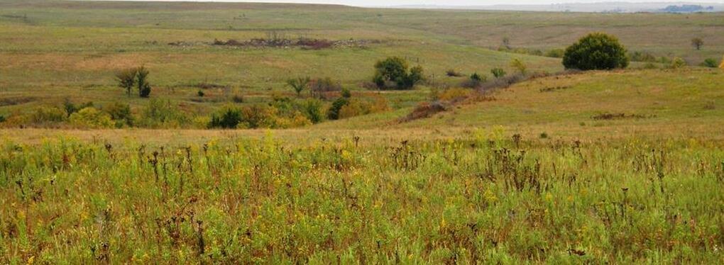 Photo of County 12 Road Sedan KS 67331