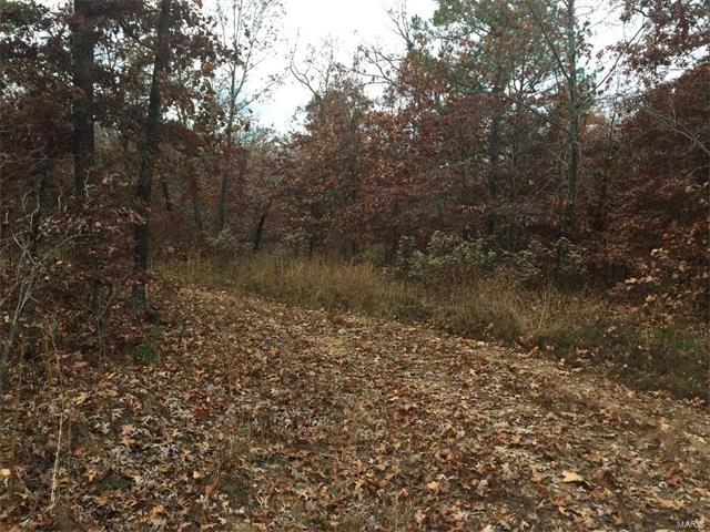 Photo of 0 White River Trace Salem MO 65560
