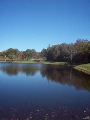 Photo of 81 Rainbow Lake BONUS Drive Villa Ridge MO 63089
