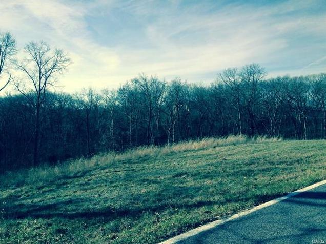 Photo of 17394 Orrville Road Wildwood MO 63005