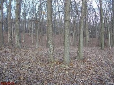 Photo of 201 Deer View Drive Troy MO 63379