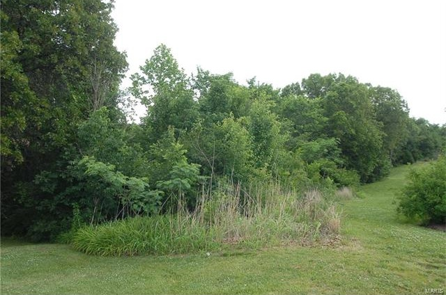 Photo of 4845 Placid Hills Drive Arnold MO 63010