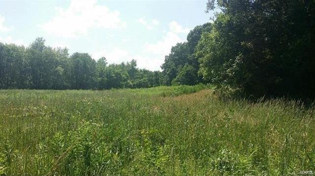 Photo of 0 64.1 acres - North Service Road Sullivan MO 63080