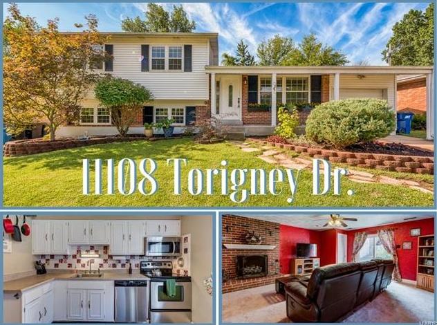 Photo of 11108 Torigney St Louis MO 63126
