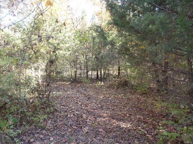 Photo of 424 Jacks Road Troy MO 63379