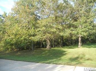 Photo of 105 Starview Drive Troy MO 63379