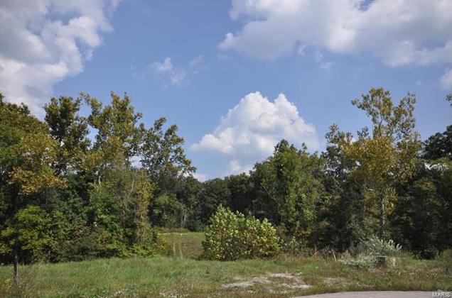 Photo of 116 Sugar Creek Drive Troy MO 63379