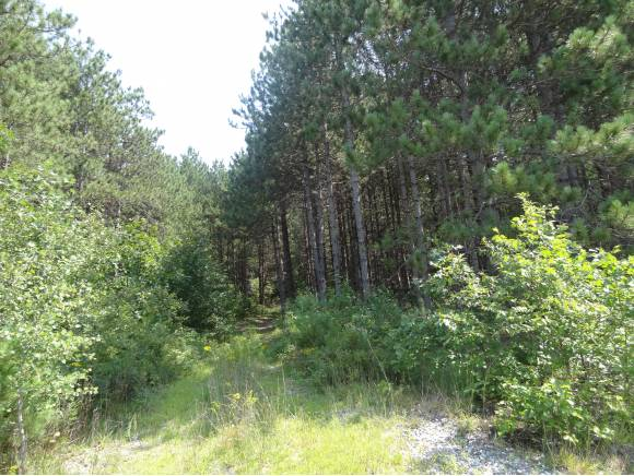 Photo of 62 Blackwater Road Lot # 2 Concord NH 03303