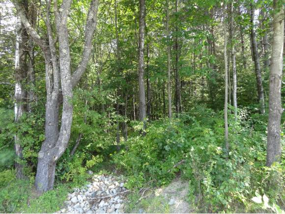 Photo of 64 Blackwater Lot # 1 Concord NH 03303