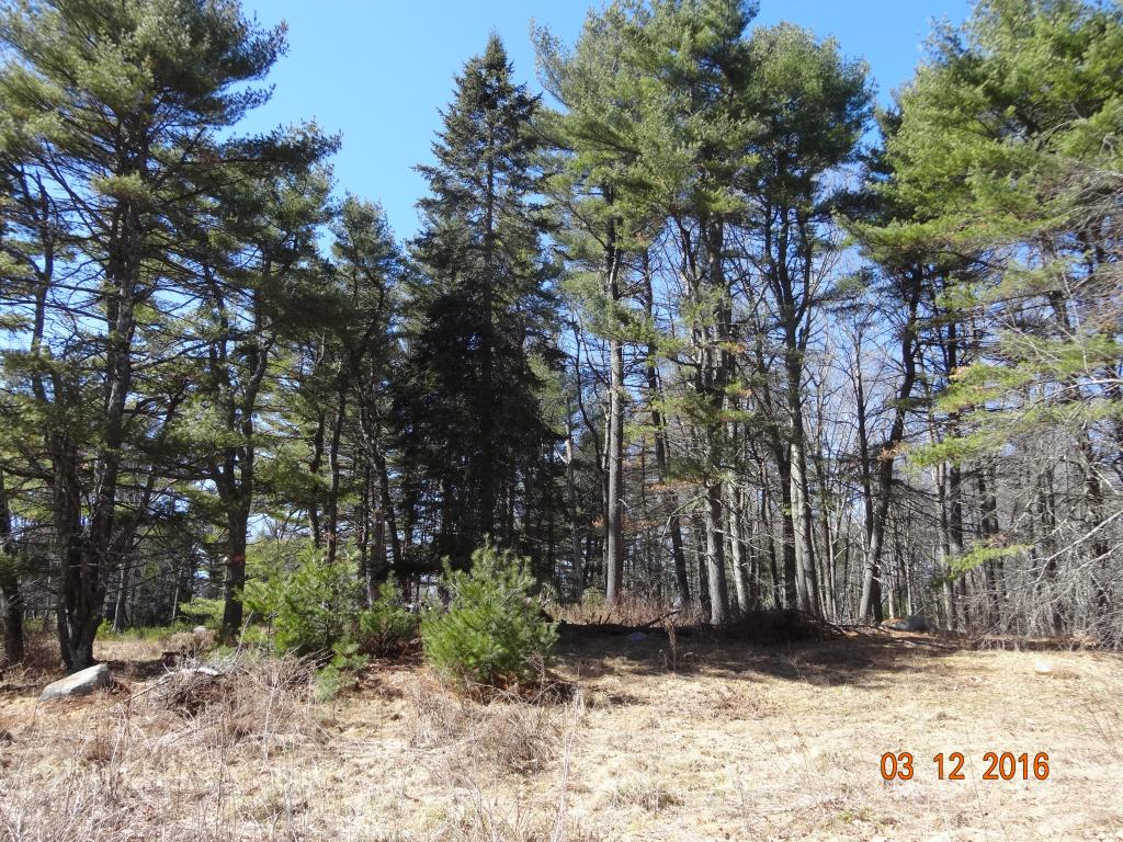 Photo of 57 Durgin Road Chichester NH 03258
