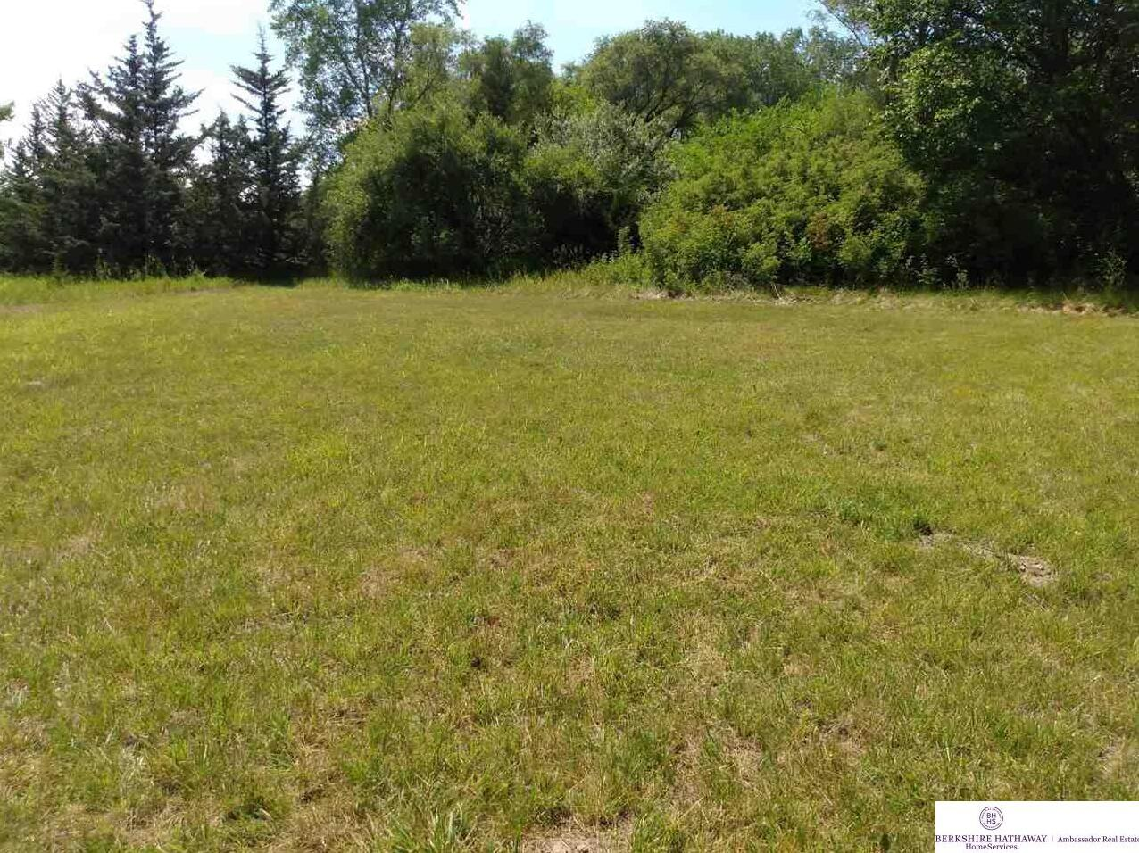 Photo of Lot 6&11 March Hare and Tea Party Lane Blair NE 68142