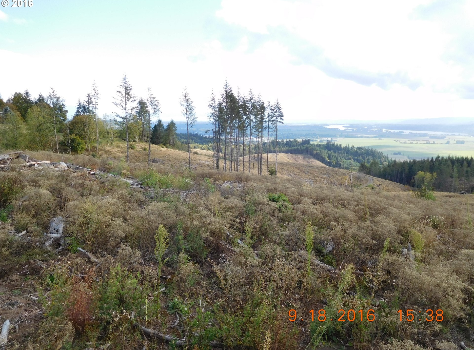 Photo of 0 Green Mtn RD Woodland WA 98674