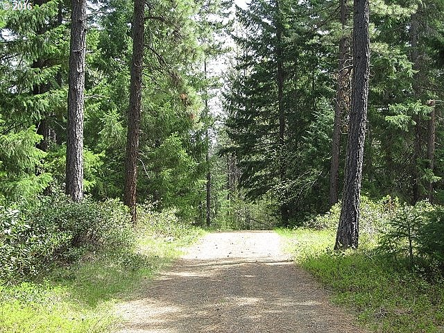 Photo of 5 Lisa LN Trout Lake, WA 98650