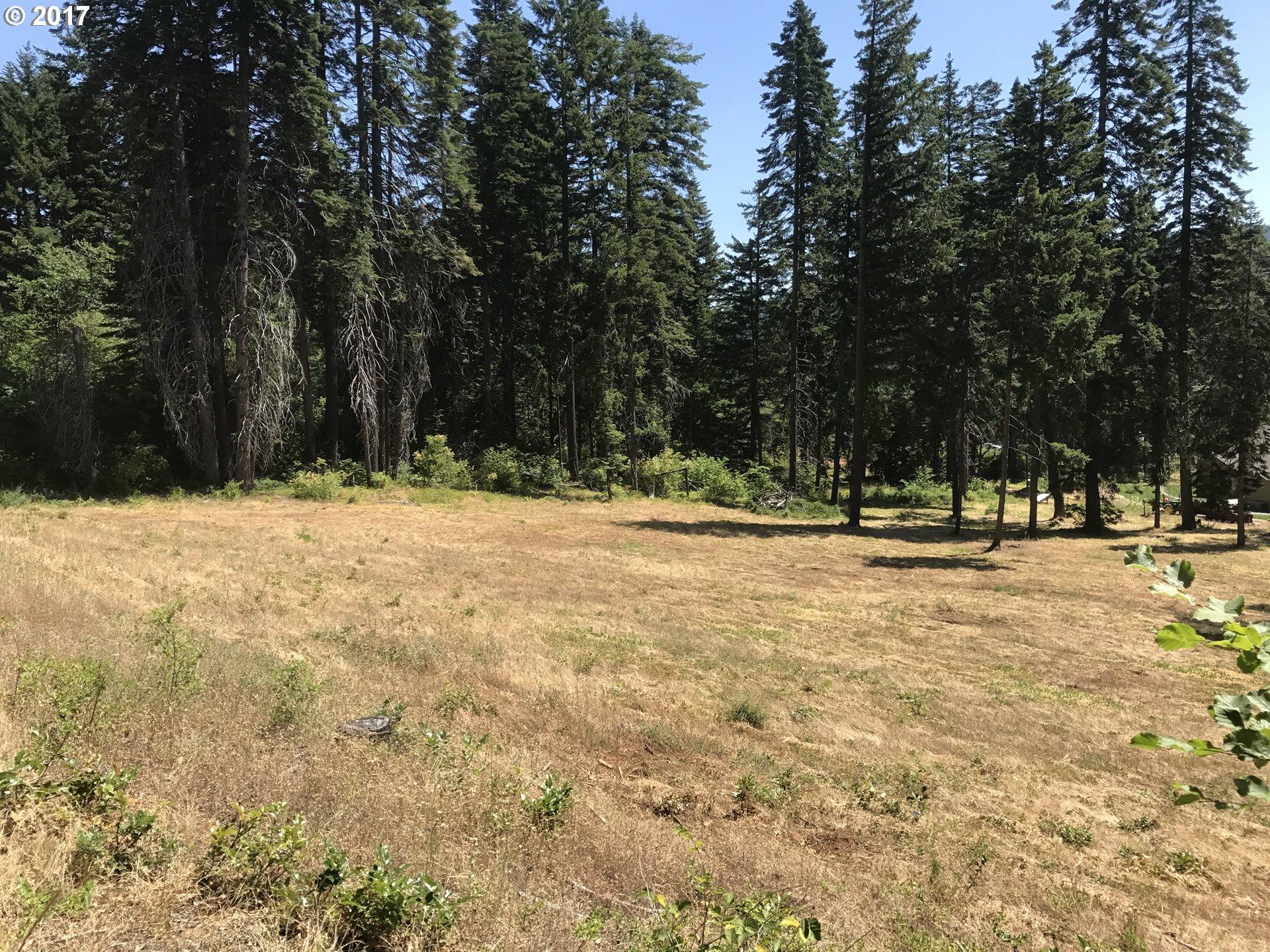 Photo of 4144 NASTASI DR Mt Hood Prkdl, OR 97041