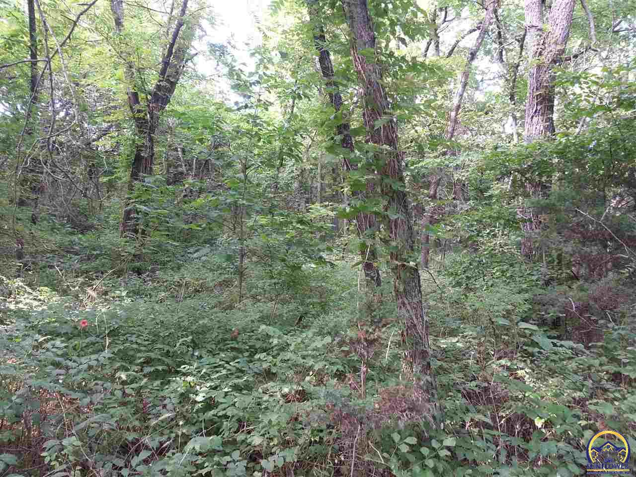 Photo of 19.84 +/- Acres Hwy 59 Perry KS 66073