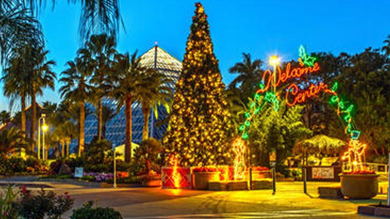 First Class Tours Inc. | Moody Gardens Christmas Lights
