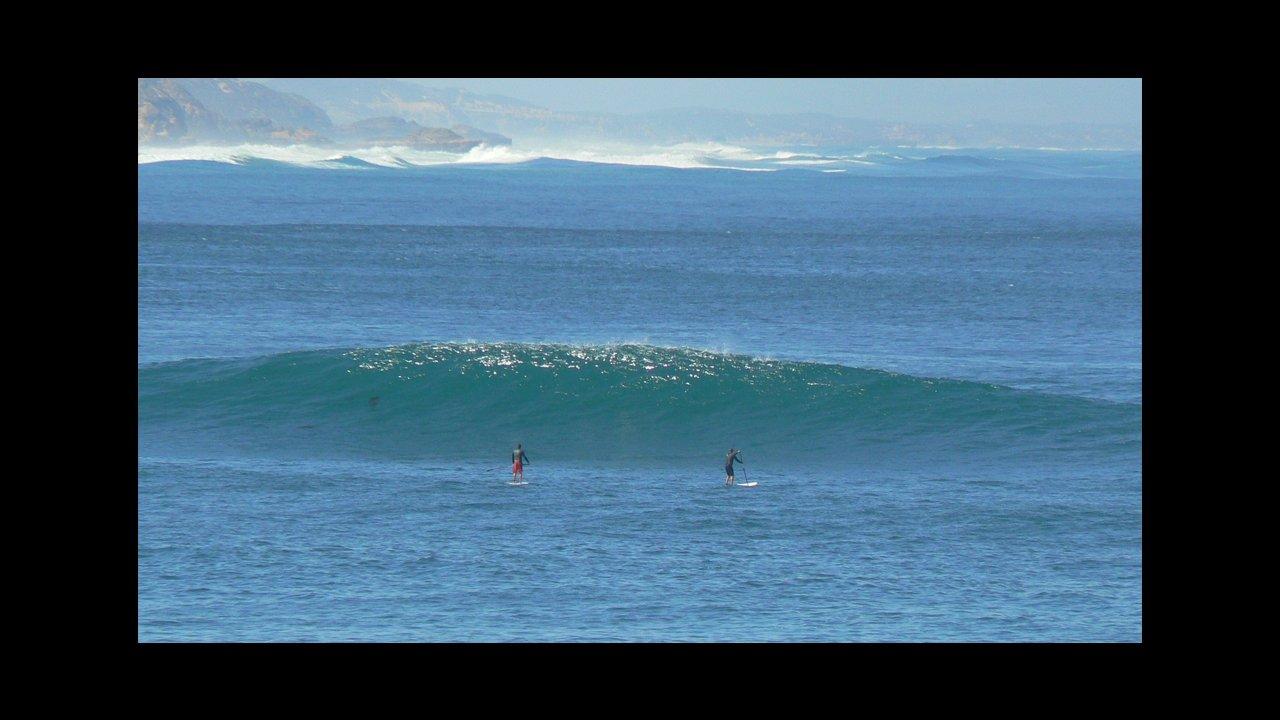 SUP Surf   WSUP