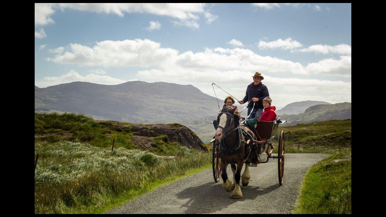 Day tour in Killarney