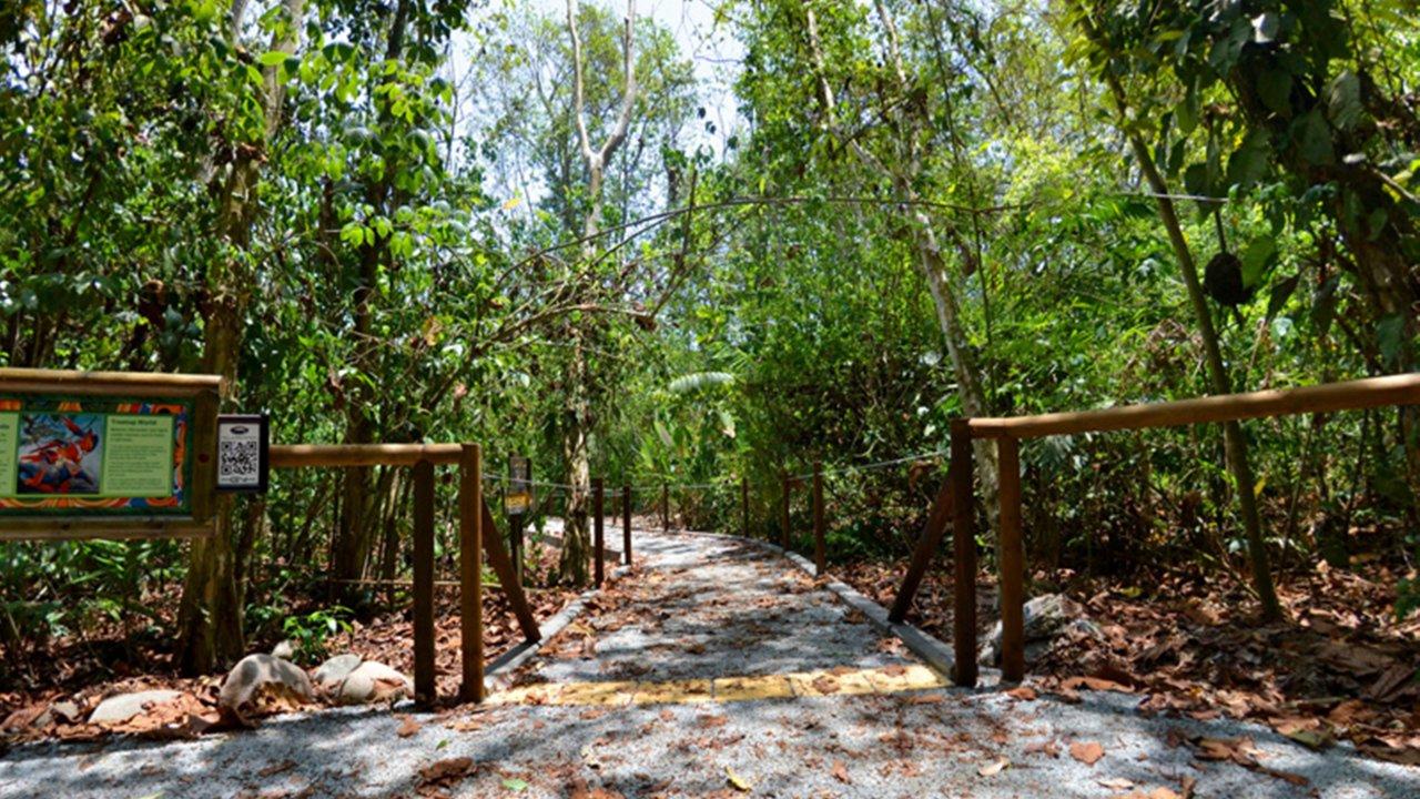Handicap accessible trail