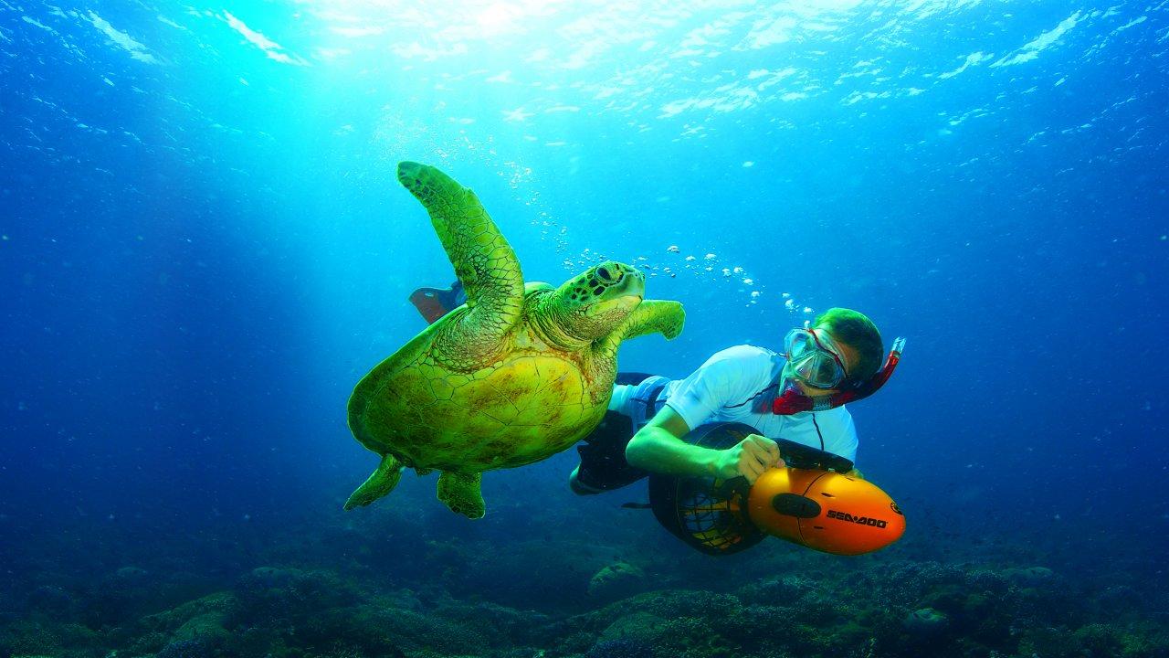 Sea Scooter Safari (Just add $45!)