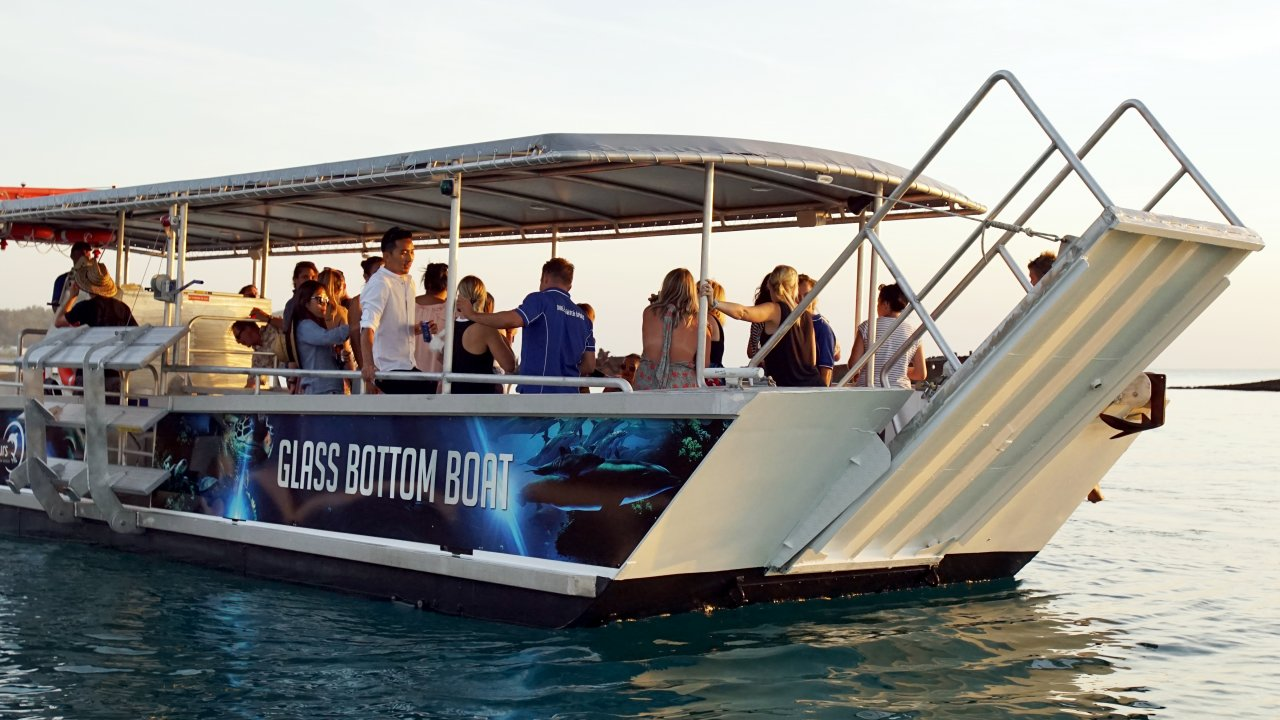 Fish Feeding Tour + Sightseeing Cruise