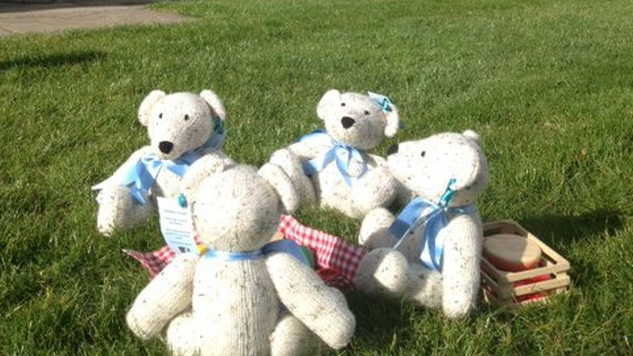 Teddy Bear's Picnic @ Killruddery House and Gardens
