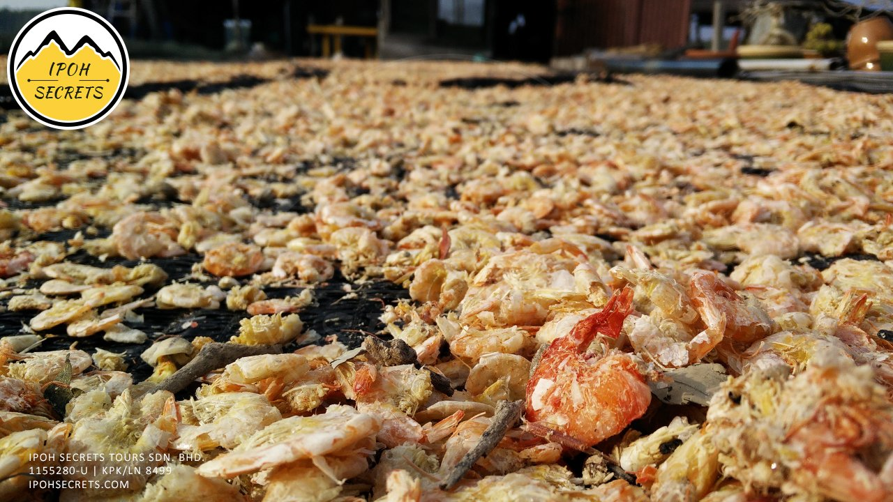 Local product Sun Dried Shrimp | Taiping Private Day Trip