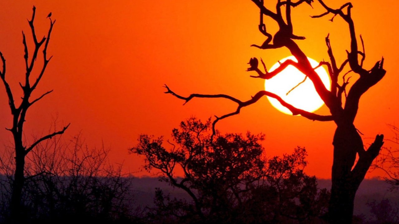 Magical Sunsets at Kruger NAtional Park