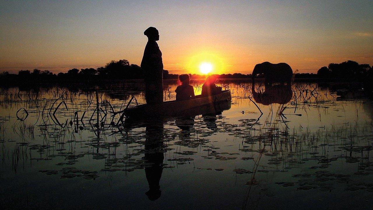 Mokoro Ride- Okavango Delta