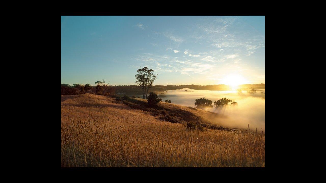 Jurlique Farm, Adelaide Hills