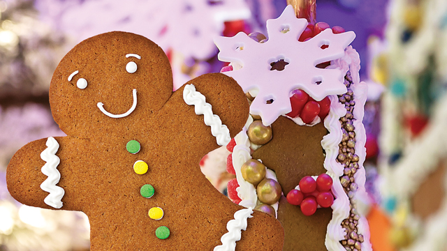 Celebrating Gingerbread Season!