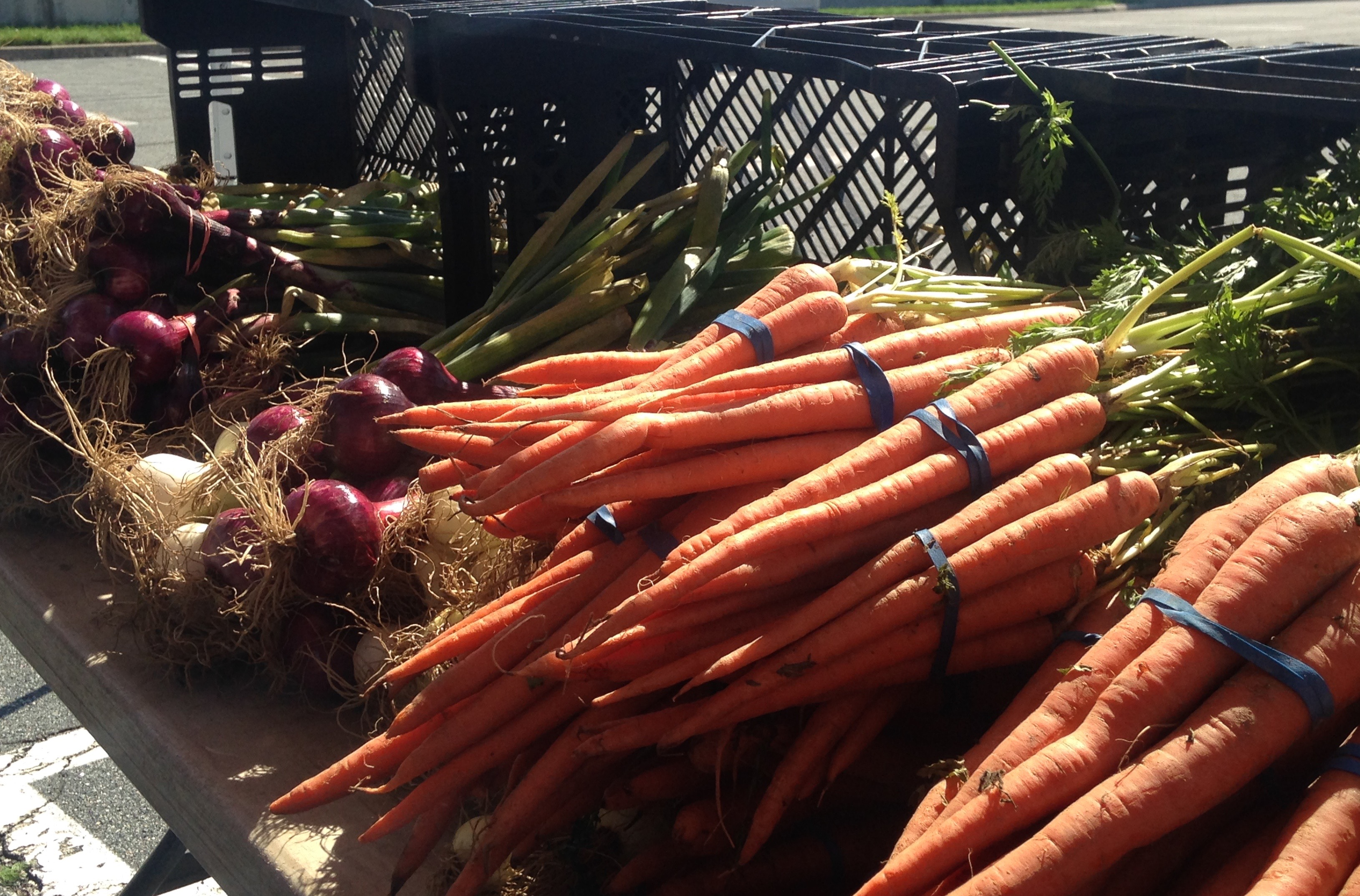 Regency Square Monday Farmers Market Features Local Vendors Every Week