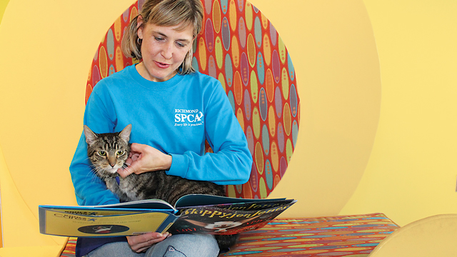 Connecting With Cats In Shelters