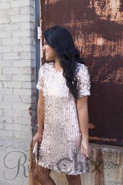 Own The Evening Dress (Blush)