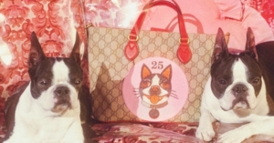 Gucci Year of the Dog