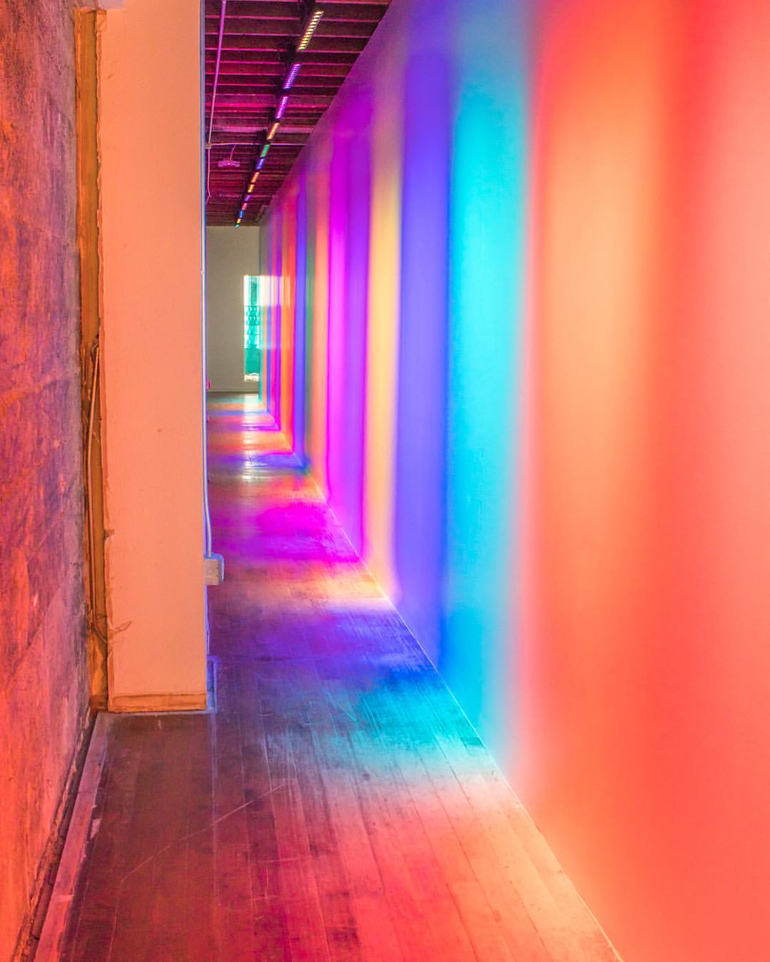 Color Factory NYC