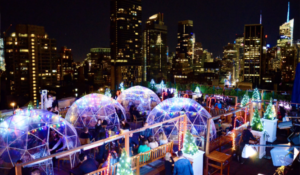 NYC Igloo Bar
