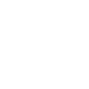 101.1 Country