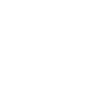 CEECAM Corporation