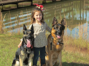 Girl standing with two German Shepherds