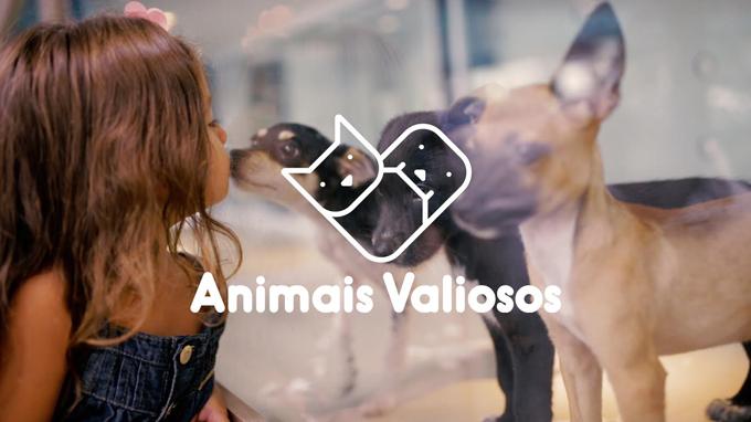 Associação Quatro Patinhas - Animais Valiosos