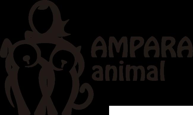 Adoção de cães SP | Ampara Animal