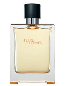 melhores perfumes masculinos terre_dermes
