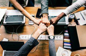 A base de uma ONG: Trabalho em equipe