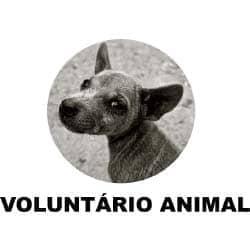 Voluntário Animal