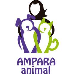 ONG AMPARA Animal