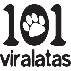 Associação 101 Viralatas